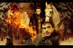Robb Stark II by StereoCatastrophe