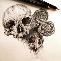Skull by elainewhy