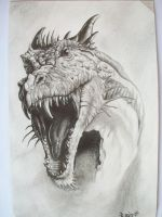 the dragon by croatian-artist-girl
