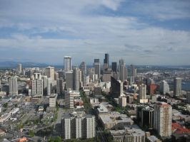Seattle from the Space Needle by Elgaladwen