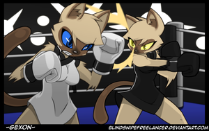 Yin and Yang Catfight By BlindSnipeFreeLancer by Gexon