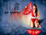 Mai Shiranui Cosplay wall by amadis33
