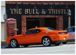 The Bull and Thistle by TheMan268