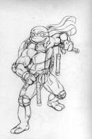 Michelangelo by thelearningcurv