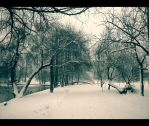 Winter frame... by Iulian-dA-gallery