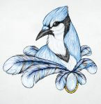 Blue Jay by BlackNemera