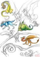 Dragon Sketches by kovah