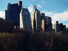 View from Central Park by goodbyeLOVE