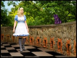 Find the way in wonderland? by L-a-y-l-a