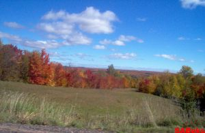 More Fall Colors! by SABeks