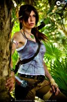 Lara Croft the new beginning by ferpsf