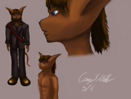 Cairn Sirithis: Model Sheet by TatterTailArt