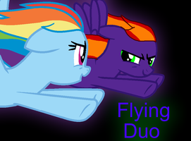 Flying Duo by DuskWolf300