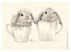 Spring bunnies by hedspace77