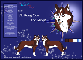 Nanook_Model-sheet by Aquene-lupetta