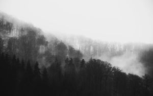 Im Nebel by MinglPassion