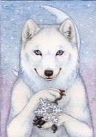 Let It Snow by Yote