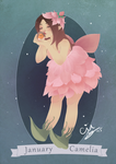 January Fairy by cindre