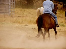 Horse and Rider by PearlT