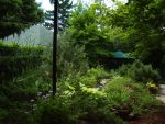 Lush Garden by Pentacle5