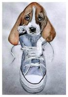 Puppy in the Shoe by jolabrodnica