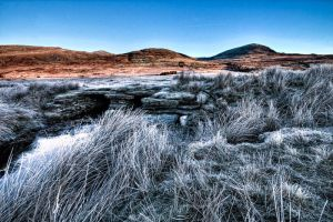 Capel Curig Walk 3 by CharmingPhotography