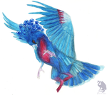Crowned Pigeon Felipter (or gryphon) by Flying-With-Dragons