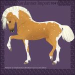 1041 Group Horse Import by Cloudrunner64