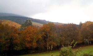 Autumn in the wooded valley by Lancerlover