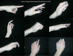 The human hand-Reference pictures by BlackPanda36