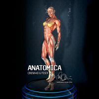 ANATOMICA by mike-reiss