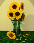 Sunflowers by gradyp