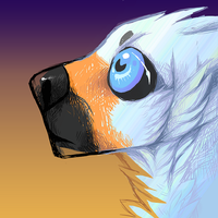 Eye balling by Tikrekins