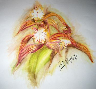 WaterColor Orchid by FebruaryBlush