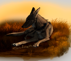 grass brushes be errywhere by Canis-ferox