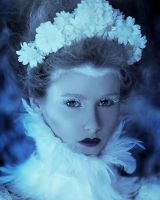 Ice Queen II (Secret Garden) by DmajicPhotography
