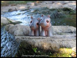Baby Hippos by ImmortalPanda