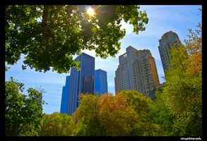 Skyscrapers in the Park by atengphotography
