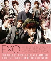 EXO's Ceci Korea June 2013 PNG Render Pack by pocket-girl