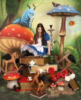 American McGee's Alice Garden 3 by ThePrincessNightmare