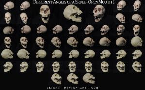Different Angles of a Skull - Open Mouth REDONE by XeiArt