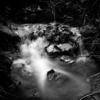 Black Creek by Gobbliwink