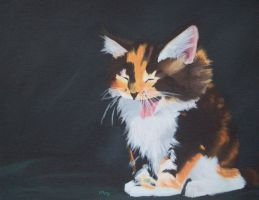 Yawning calico by redcat1887