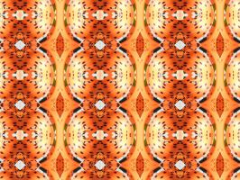 Spotted Pattern. by Trippy-CS