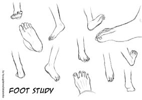 FOOT STUDY by ts-hl by hyuugalanna