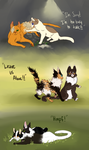 What is going to happen to DawnClan? by ssleepy