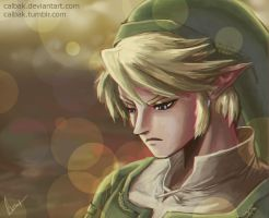 Link fan art (Twilight Princess) by Calbak