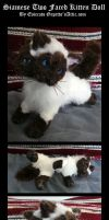 Siamese Disprosopus Kitten Posable Art Doll by Eviecats
