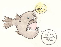 angler by papersouls