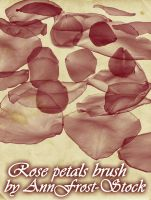 Rose petals brush by AnnFrost-stock